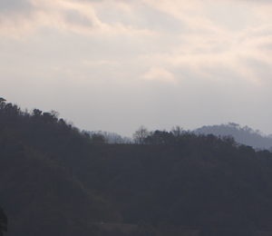 令和2年47都道府県幸福度ランキング結果レビューアイキャッチイメージ